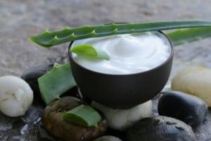 Aloe-Vera-Creme-selber-machen